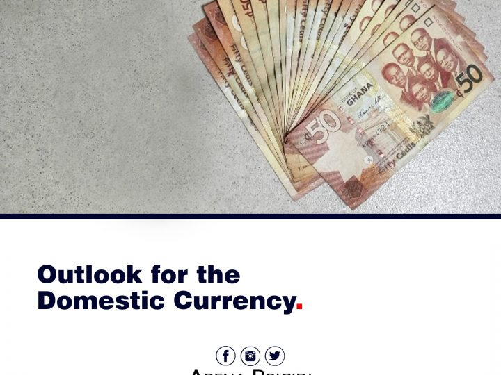 Outlook For Domestic Currency (1)